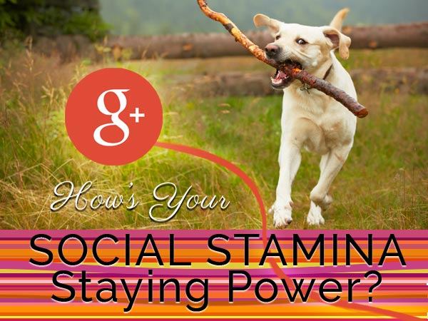 social stamina and staying power